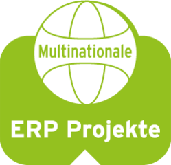 icon_erp__249x238_249x240.png